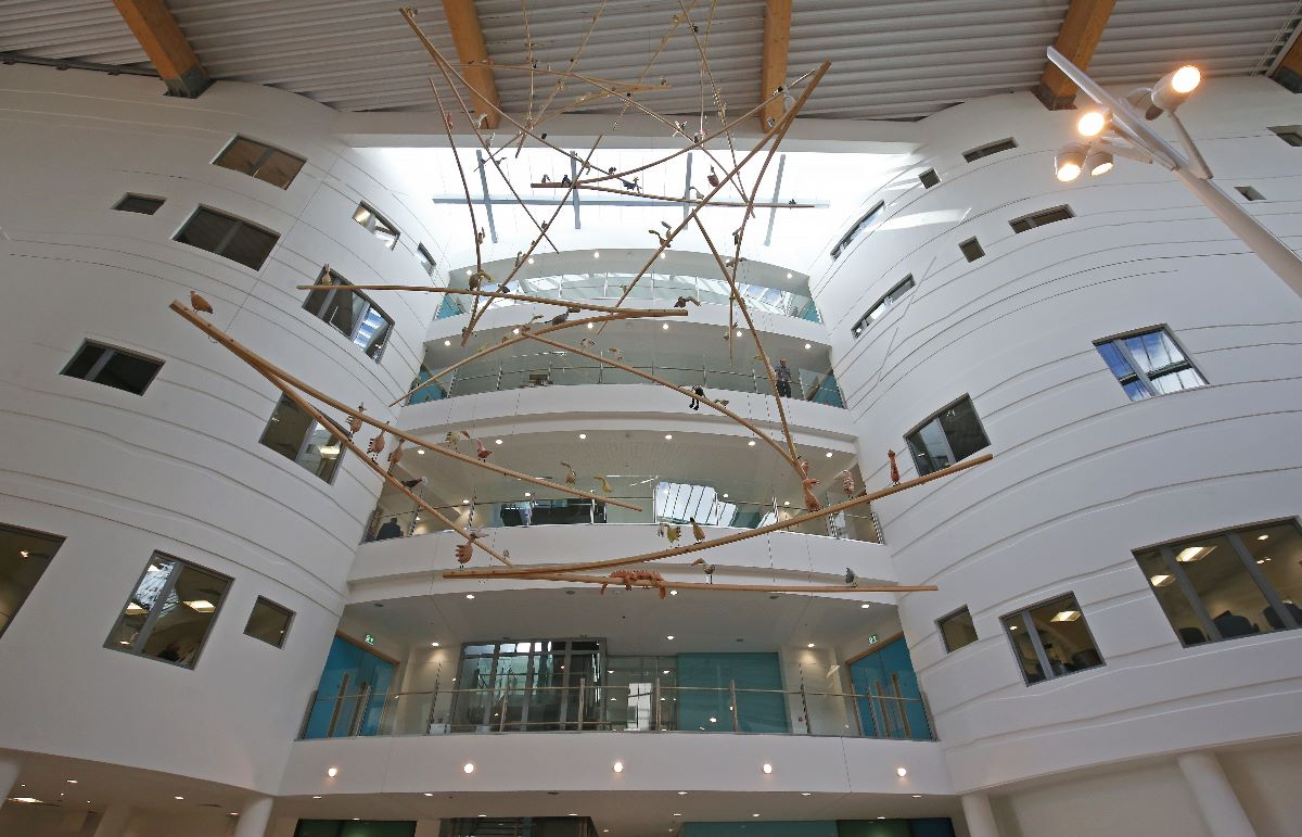 New Alder Hey Hospital 070.JPG